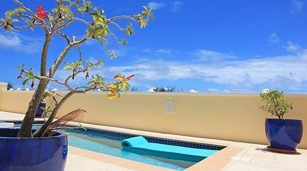 almond tree villa anguilla