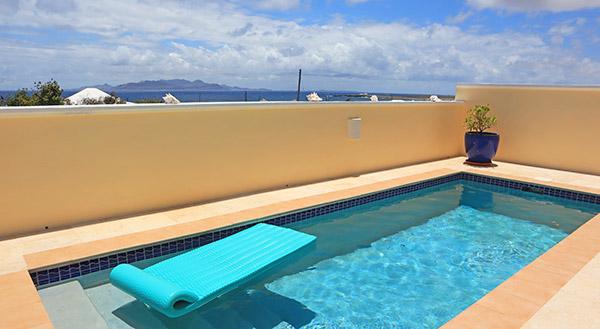 almond tree villa pool
