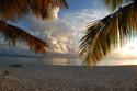Anguilla Fills Our Dreamsl -Ellen Dioguardi