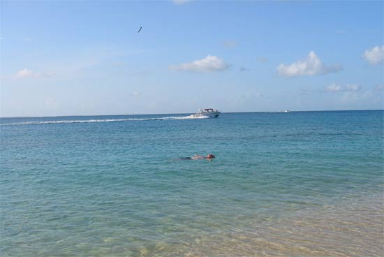 anguilla floating