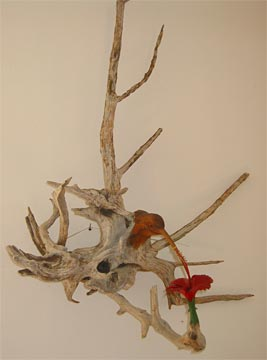 Anguilla sculpture -  humming bird
