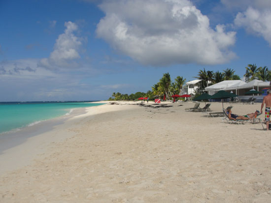 Anguilla beaches, Sargassum seaweed, Shoal Bay, Lower Shoal Bay