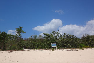 Anguilla, Anguilla beaches, beach walk, Barnes Bay, real estate