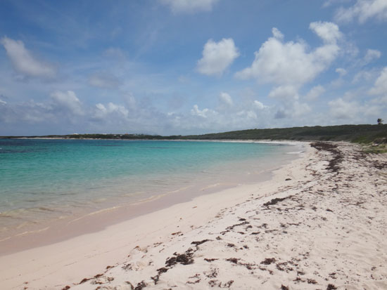 savannah bay beach anguilla