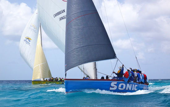 sonic and de tree from the sea during an anguilla sail boat race