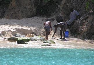 Killing the eel on Little Bay