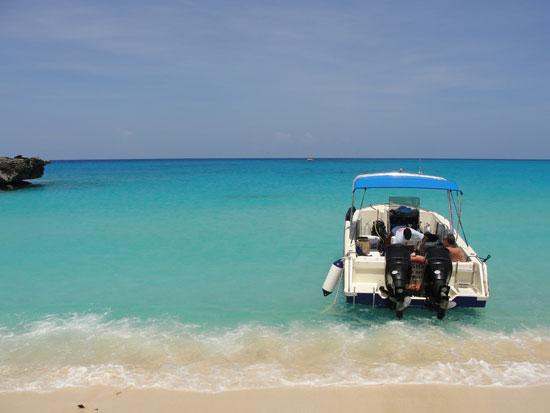 Anguilla diving, Dog Island, Special D Diving