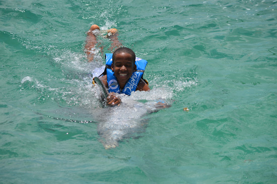 dolphin discovery dolphin swim anguilla
