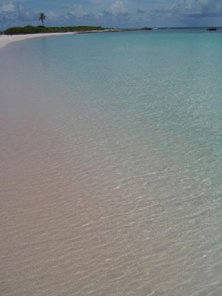 Anguilla Island Savannah Bay September