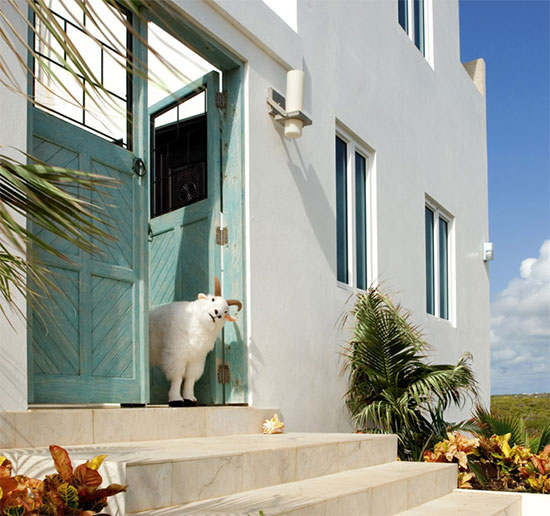 luxury anguilla villa