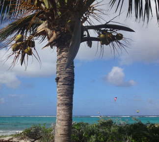 kitesurfing at prickly pear