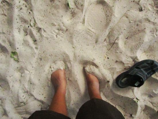sandy feet anguilla