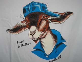 anguilla t-shirt shop