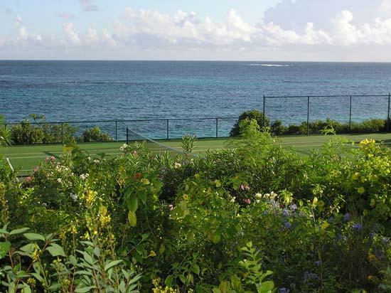 BCV tennis court