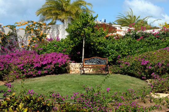 Little Butterfly anguilla villa rental