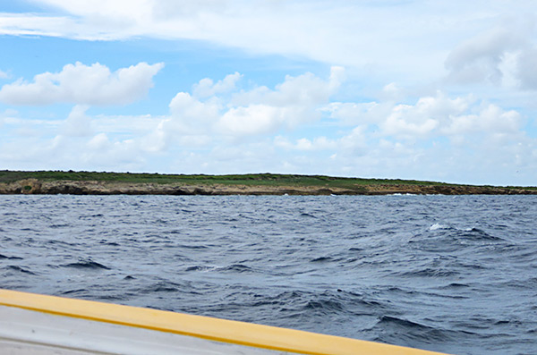 approaching dog island anguilla