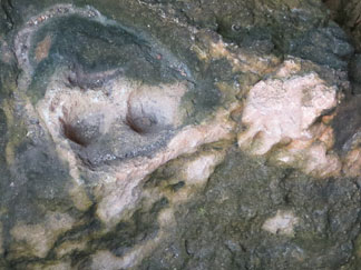 Big Spring Petroglyph of Face in rock