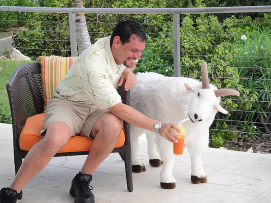 goat drink anguilla