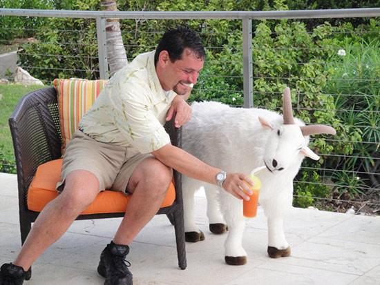 goat drink anguilla