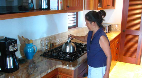 anguilla villa black pearl kitchen