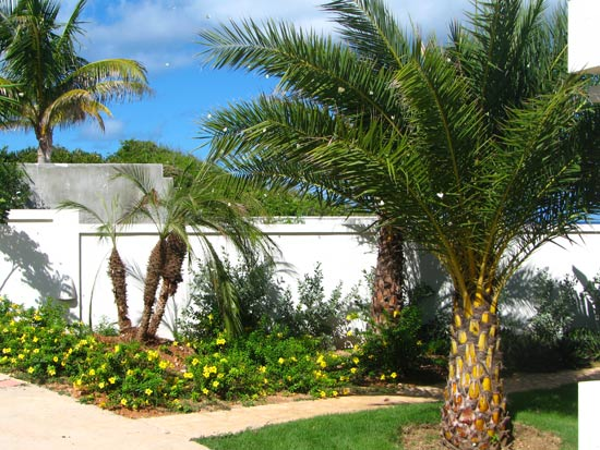 anguilla villa gardens