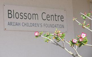 blossom centre in anguilla