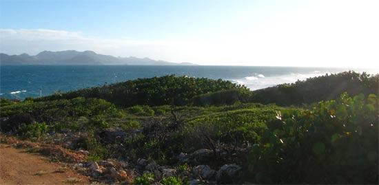 caribbean golf