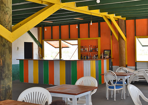 Colorful wooden bar at palm grove