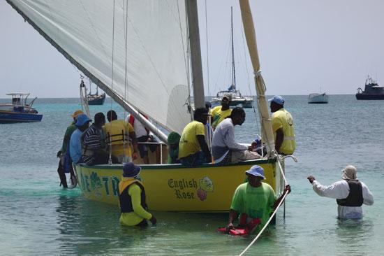 the crew climbing on board de tree