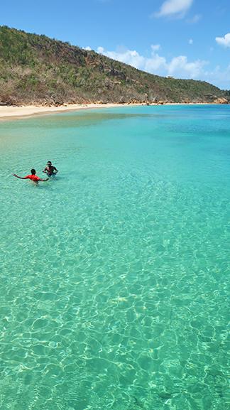 davida clear water of crocus bay