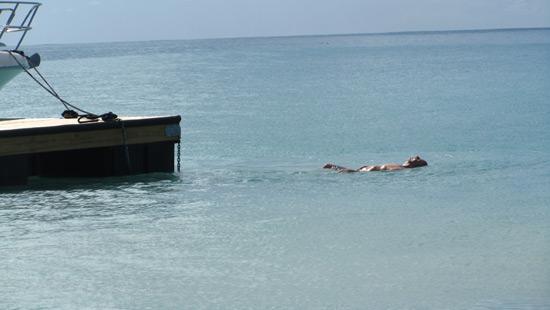 dad's wharf jump davida
