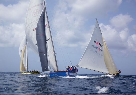top 3 sailing boats de tree, sonic and real deal