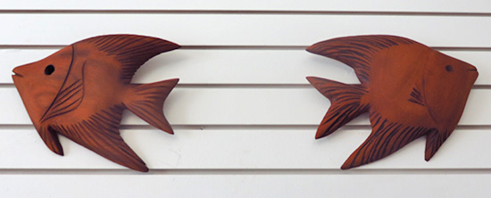 devonish angel fish out of mahogany