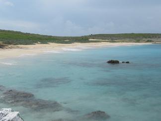 savannah bay and grass lands on dog island