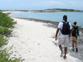 prickly pear beach in anguilla