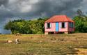 Anguilla's Fishing Heritage -Lee Zucco