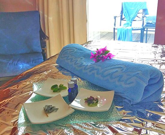 fresh spa ingredients at venus spa