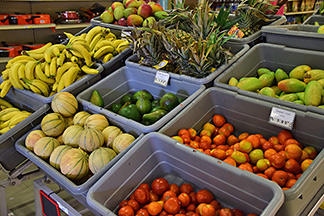 fresh fruits and vegetables at proctors grocery store