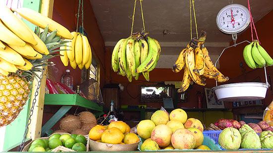 fruity web produce