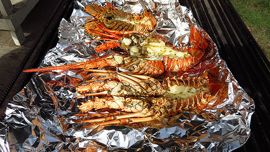 sea bat and lobster on the grill