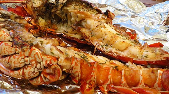 grilled lobster cooked to perfection