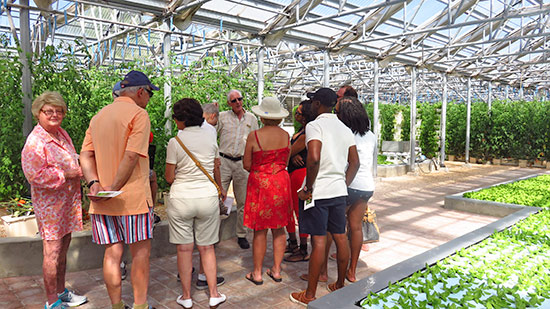 hydroponic tour at cuisinart golf resort and spa