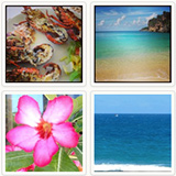 anguilla beaches instagram