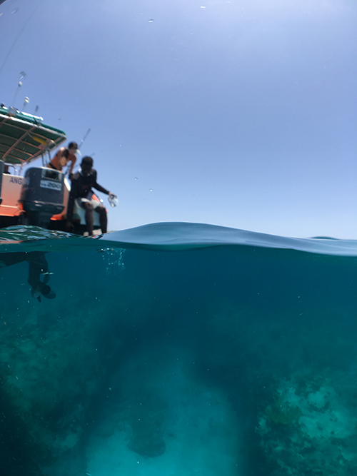 jumping into scrub island ocean