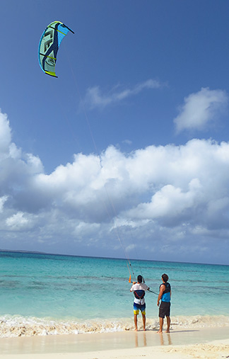 kites high in the sky
