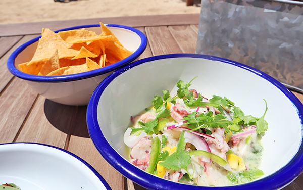Octopus Ceviche with Tortilla Chips