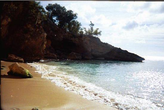 jill anguilla