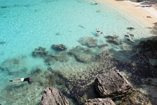 snorkeling in little bay