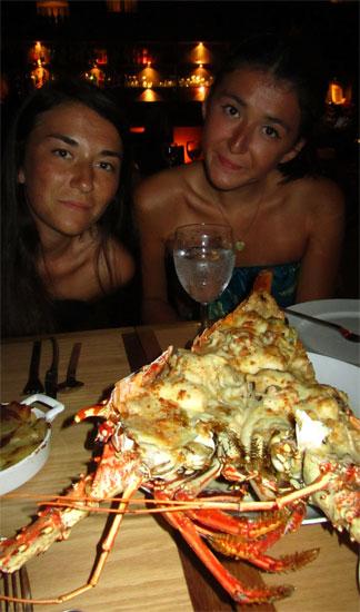 cote mer lobster