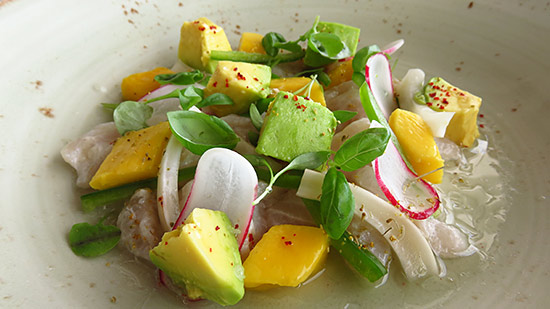 snapper crudo at malliouhana